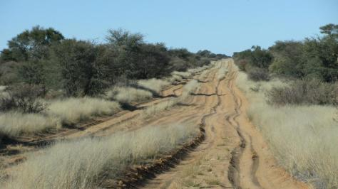 Mabuasehube - Namaqua Eco 2010 422.jpg